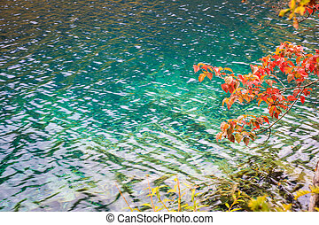 autumn lake background - turquoise lake with red leaves in...