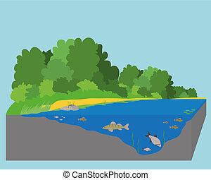 River - The Fish in the River Vector illustration EPS10