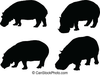 hippo collection - vector - illustration of hippo collection...