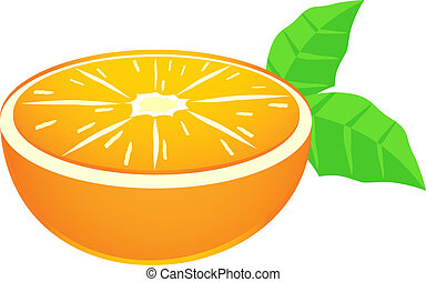 Orange fruit - Creative design of orange fruit