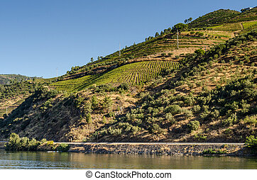 Douro Valley - Mountains landscape of Douro Valley,...