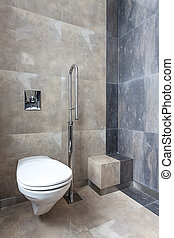 Wc for disabled person - Wc with silver bar for disabled...