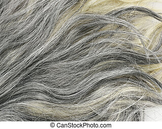 Grey  Hair Background - Grey  Hair Texture For Background