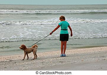 Woman Walking Dog on Beach Sanibel Island Florida