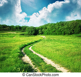 Lane in meadow and deep blue sky Nature design