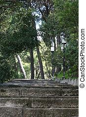 pasos, naturaleza