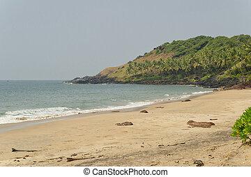 GOA - peaceful beach in GOA