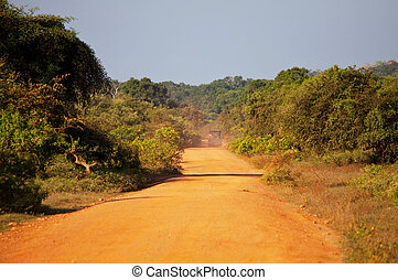 Safari on Sri Lanka