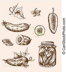 Vintage cucumbers - Set of vector vintage hand drawn...