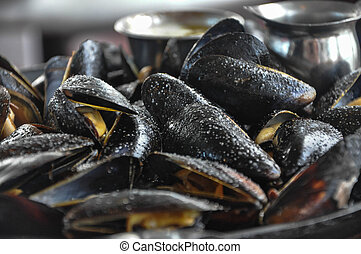 Steamed Mussels - This is a plate of steamed mussels with...