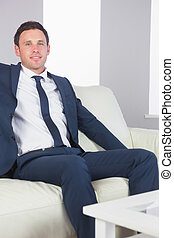 Smiling handsome businessman relaxing on couch in bright...