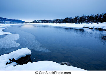 Winter Scene - a cold winter landscape