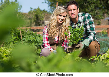 Young couple holding a plant while crouching in their garden