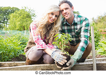 Young couple planting a shrub in their garden smiling at...