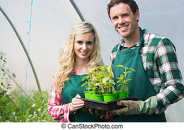 Young couple showing carton of small plants in a green house...
