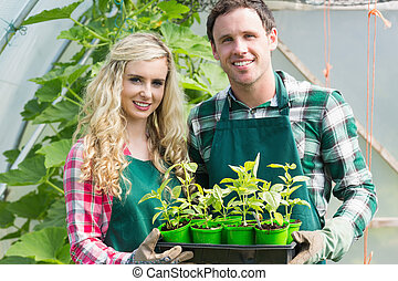 Smiling couple showing carton of small plants in a green...