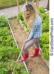 Pretty blond woman working with a rake in her garden on...