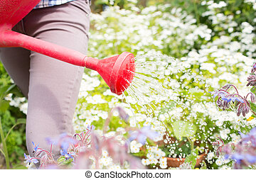 Woman watering flowers with red watering can in her garden