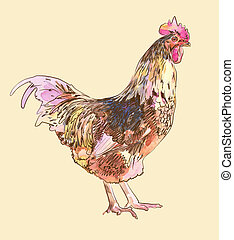 watercolor painting sketch cock - hand draw watercolor...