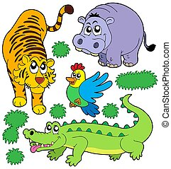 ZOO animals collection 5 - isolated illustration.