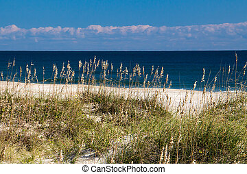 Outer Banks beach - A view of an Outer Banks beach