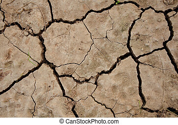 clay  - cracked clay ground into the dry season