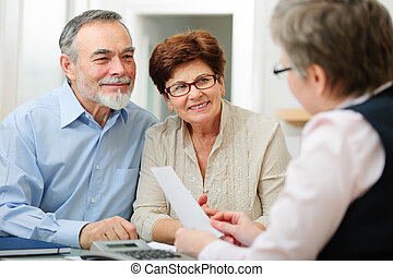 Meeting - Senior couple discussing financial plan with...