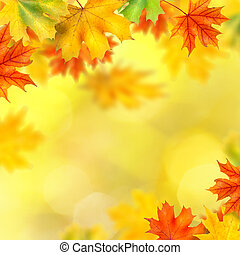 backround with autumn leaves - background with autumn leaves
