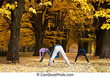 Stretching exercises in park