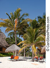 Beachfront of Mexico - The beautiful beaches of Playa Del...