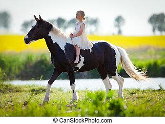 niño, equitación, caballo, pradera