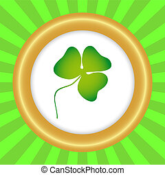 Clover on the day of St. Patrick