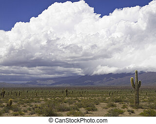 Desert storm - An arid landscape waits for the storm to...