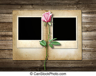Polaroid-style photo on the wooden background with pink rose...