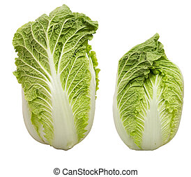 Chineese cabbage - Chinese cabbage can refer to two distinct...