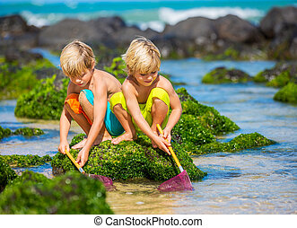 Two young boys having fun on tropical beach, happy best...