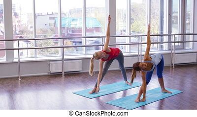 Yoga Sequence - Young women doing a series of asanas...