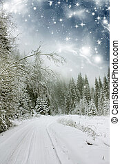 Winter landscape with snow covered road - Beautiful winter...