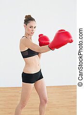 Concentrated fit woman wearing boxing gloves while posing in...