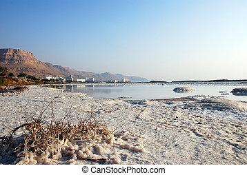 Salty coast - Salt on coast of Dead Sea, Israel