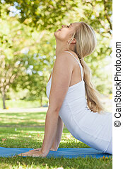 Profile view of sporty young woman - Profile view of sporty...