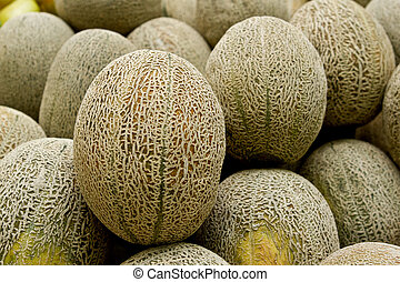 Rock melon or Cantaloupe refers to a variety of Cucumis...