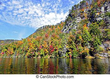 autunno, colori, lago