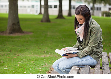 Focused brunette student sitting on bench reading on campus...
