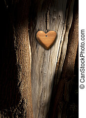 Tree Bark with Wooden Heart
