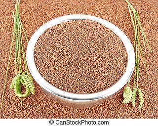 Finger Millet in a Bowl - Finger millet, also known as ragi,...