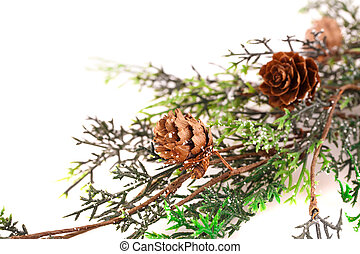 Christmas tree branch with cones isolated on white...