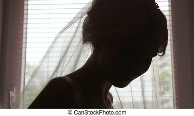 Beautiful bride silhouette