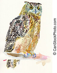 original watercolor painting of bird, owl on a branch (Bubo...