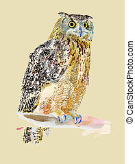original watercolor painting of bird, owl on a branch Bubo...